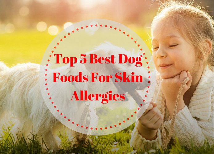 The Best Dog Foods For Skin Allergies Top 5 Picks In 2019