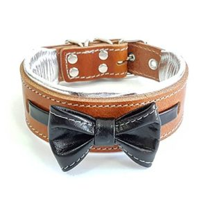Bestia Dog Collar,